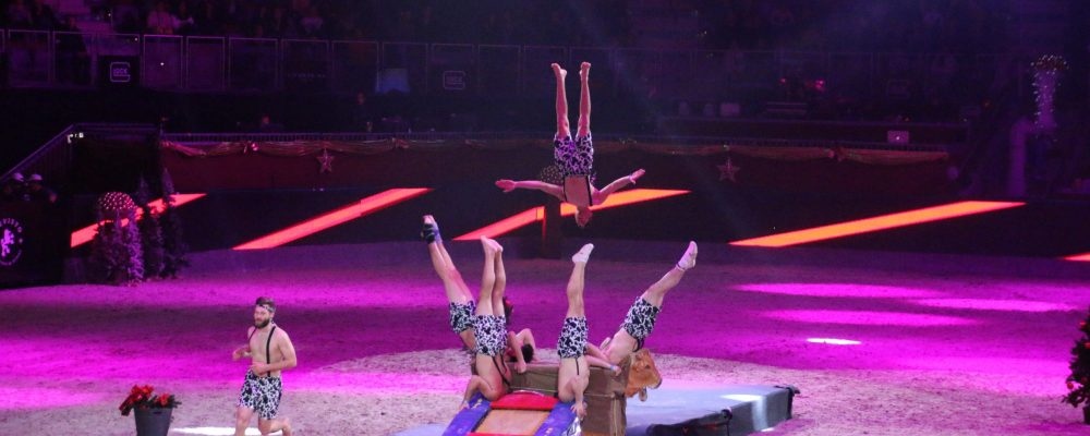 2015 Mevisto Amadeus Horse Indoors 3.-6.12.15 (99)